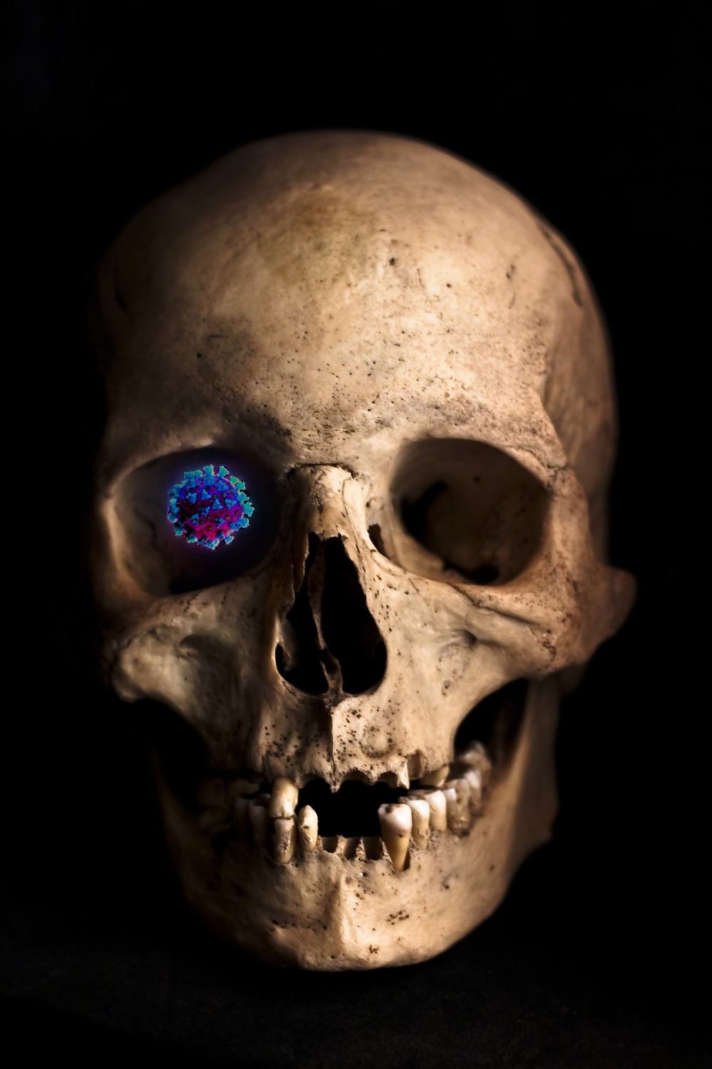 virus in skull eye